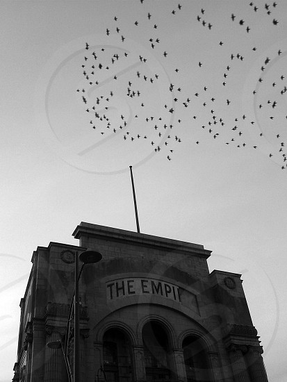 wrecked building The Empire Theatre Great Yarmouth Flock of birds Black and white photo
