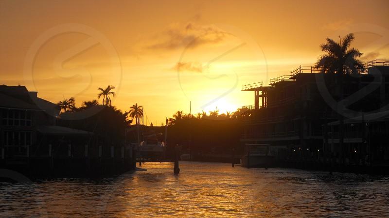 #landscape sunset #sunset #water #Florida #palm trees   photo