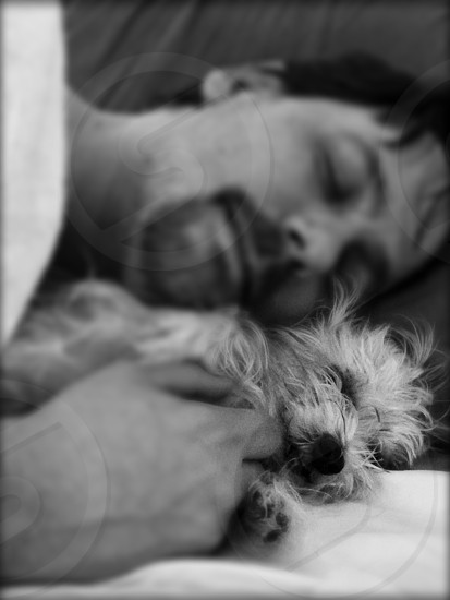 Black and white image of middle aged male cuddling a white yorkie. photo