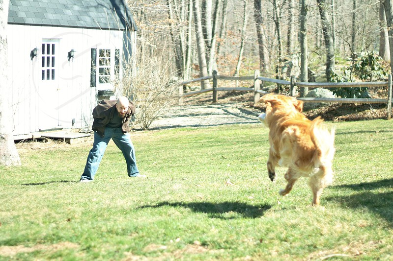 Dog running to owner midair jumping. photo