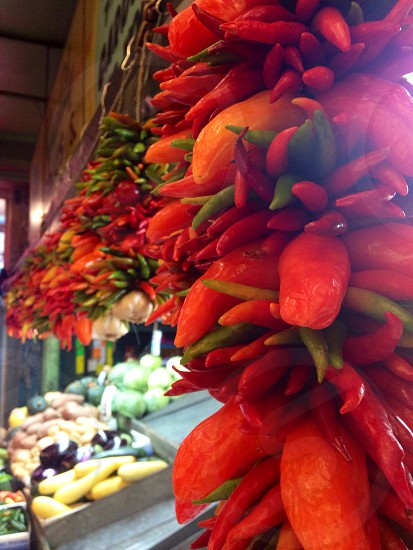 inline red and green chili peppers hanging display photo