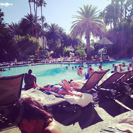 Hotel Mirage - Las Vegas  photo