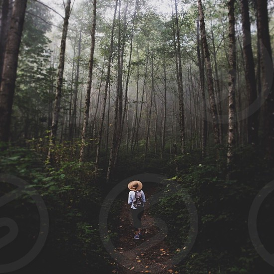 woman in white sweater walking on forest photo