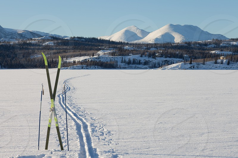Cross country skiing skis and poles near ski track on frozen Lake Laberge Yukon Territory Canada perfect winter snow conditions with blue sky photo