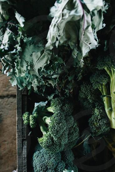 green broccoli photo