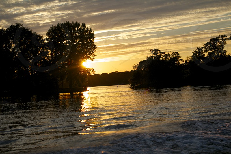 trees along the river during sunset  photo