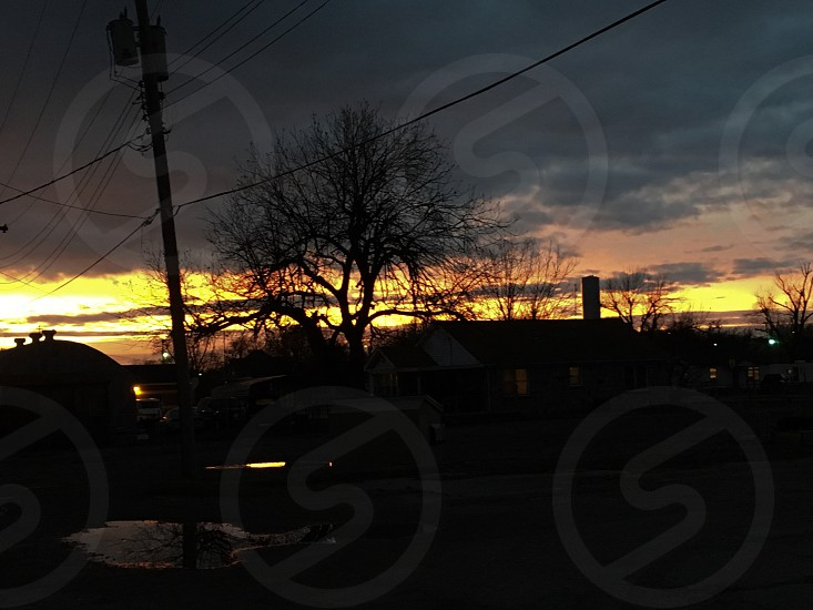 Sunset Evening Urban City Trees Buildings Puddle Telephone Poles Telephone Wires Clouds photo