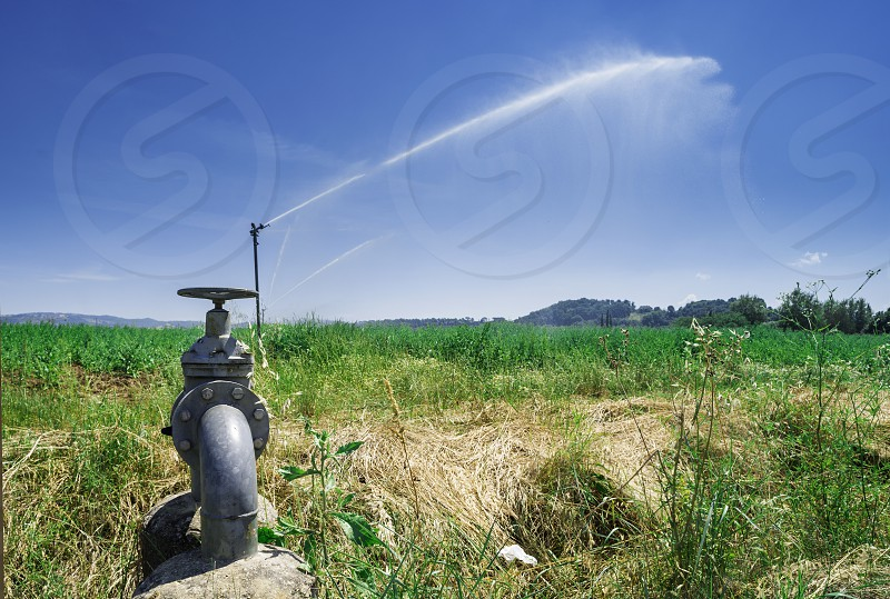 Agricultural irrigation systems. Sprinkler and tubes photo