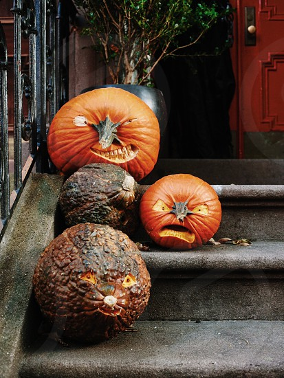 orange pumpkins on gray concrete stairs photo