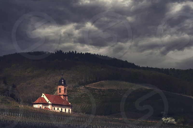 church in the vineyards of alsace france under a cloudy sky photo