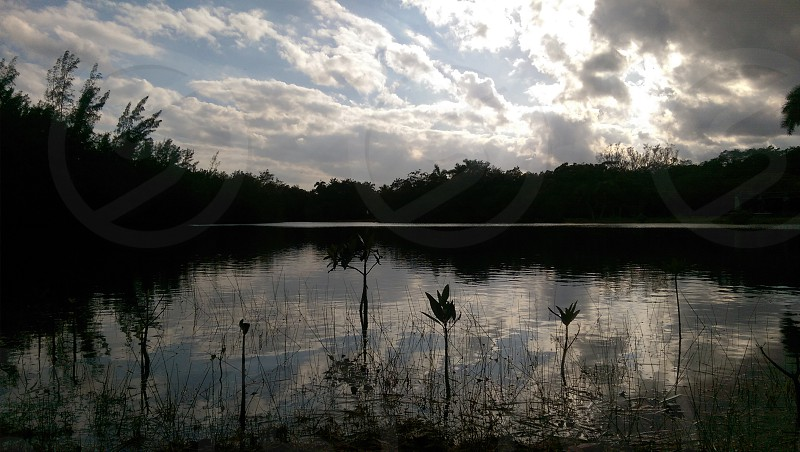 #everglades #evening #nature #water #landscape photo