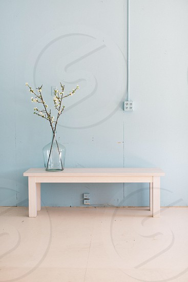 white flower on a brown stem on a clear glass bottle on a white wooden console table in front of a blue painted wall photo