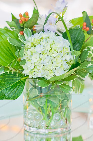 Flowers | Close up of flower bouquet from a wedding reception.  Love Hydrangeas!  photo