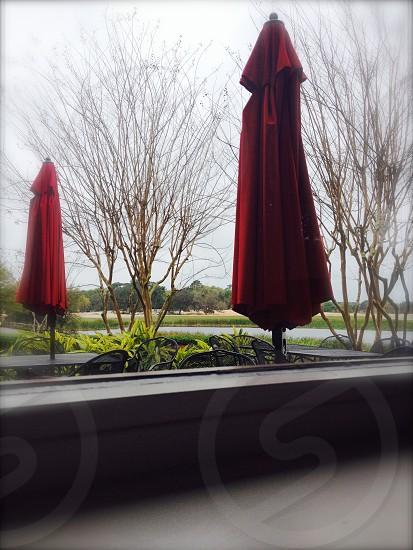 collapsed red umbrellas photo