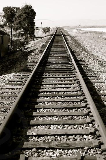 Lonely Railroad Tracks. photo