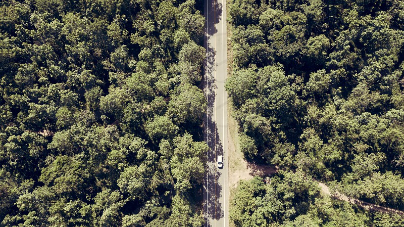 Top view the road in forest from drone of nature. photo
