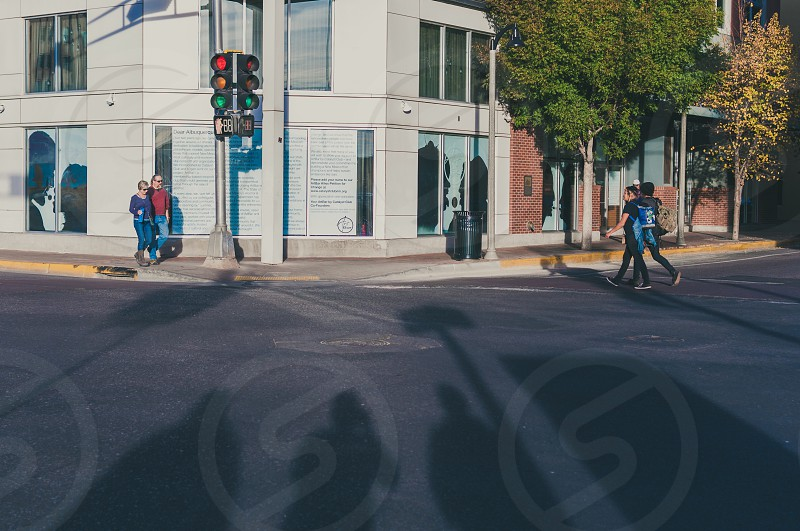 people crossing road near building and trees at daytime photo