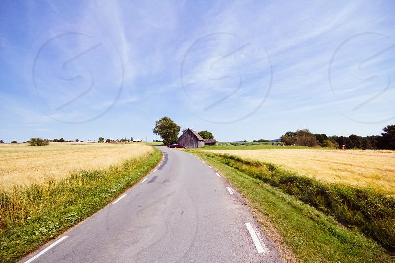 view of gray asphalt road photo