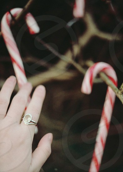 hand candy cane christmas red brown vertical festive winter photo
