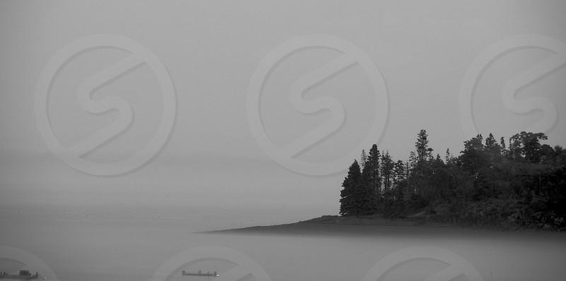 Atlantic Ocean. Acadia. Fog. Island. Trees. Monochrome. Black and White. photo