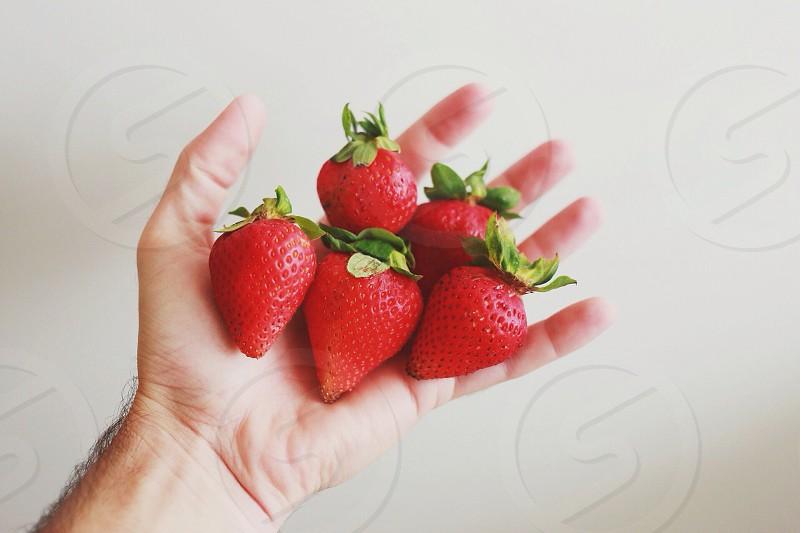 red strawberries on hand photo