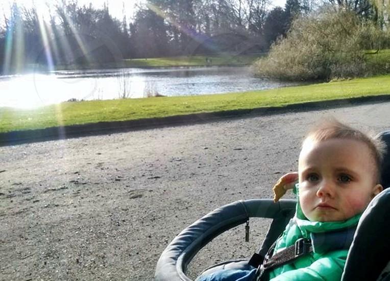 baby on stroller photo