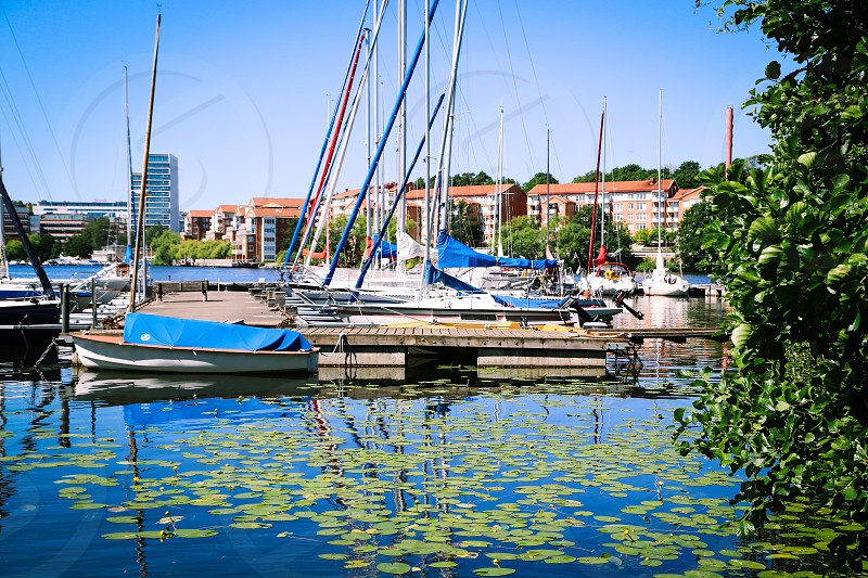 Sailing boats  masts jetty port harbor summer sailing engine engines transport water transport  photo