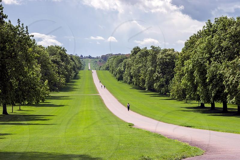 The Long Walk at Windsor Great Park photo