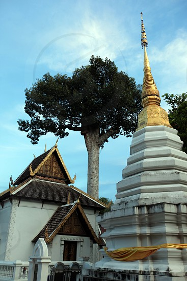 the  Wat Chedi Luang Tempel in the city of chiang mai in the north of Thailand in Southeastasia.  photo