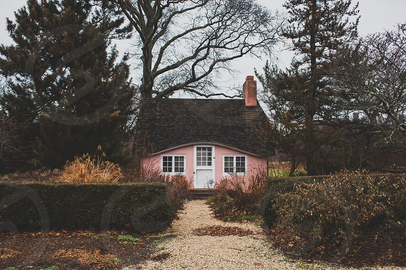 black and pink house photo