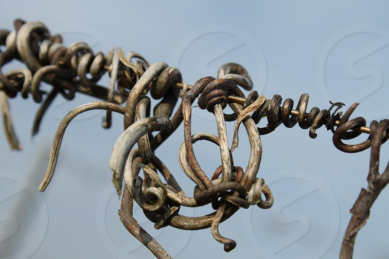 gray twisted wire along fence photo