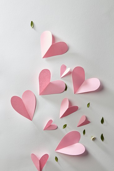 beautiful pink heart and leaves on a white background. Postcard St. Valentine photo