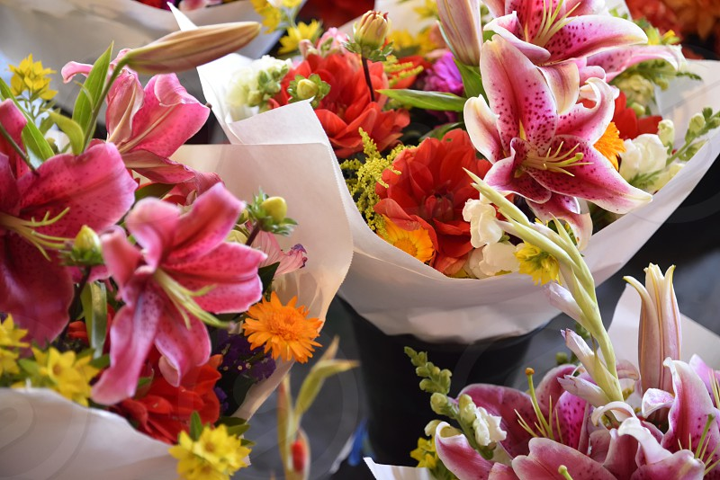 Spring bouquets. photo