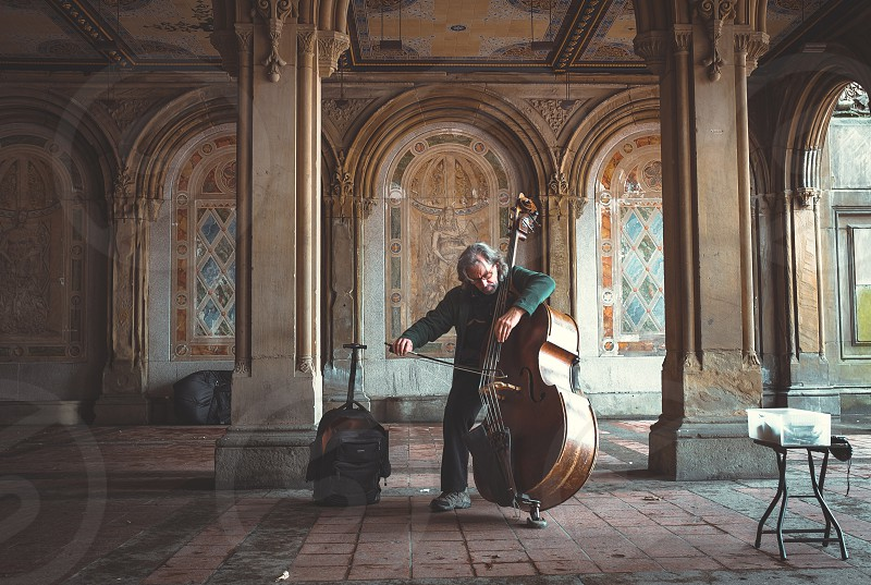 man playing string instrument photo