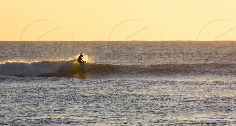 Surfer lone ocean wave gold sunlight blue wave photo