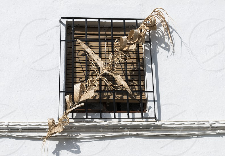 Blessed Palm Branch in Easter at a house in spain photo