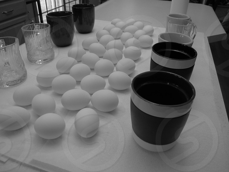 Preparing to color the Easter Eggs. photo
