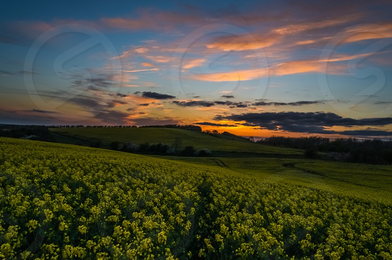 hill spring sunset yellow colours clouds sun photo
