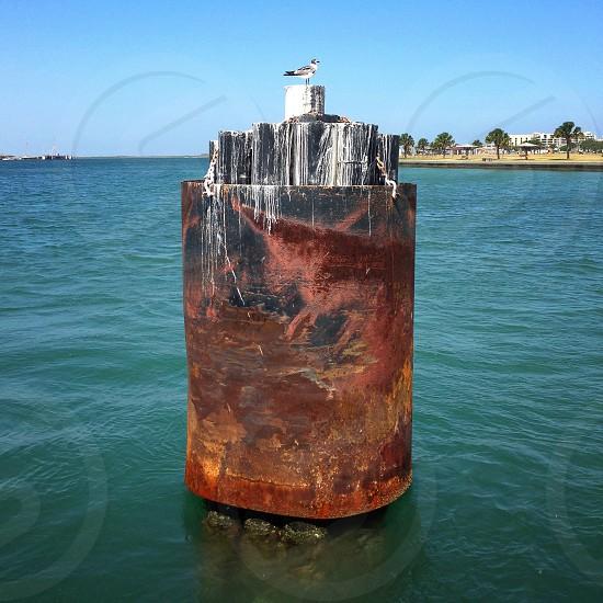 Ferry Boat Bumper Port Aransas Texas photo