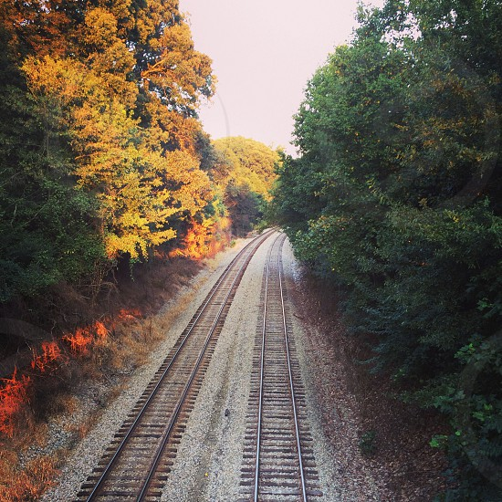 Train tracks at Emory University photo