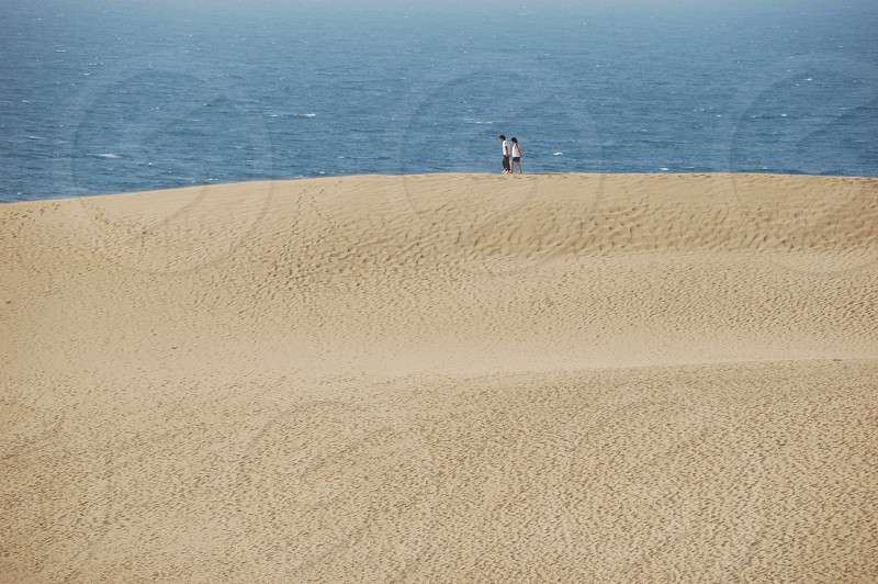 鳥取砂丘 Tottori Sand Dunes photo