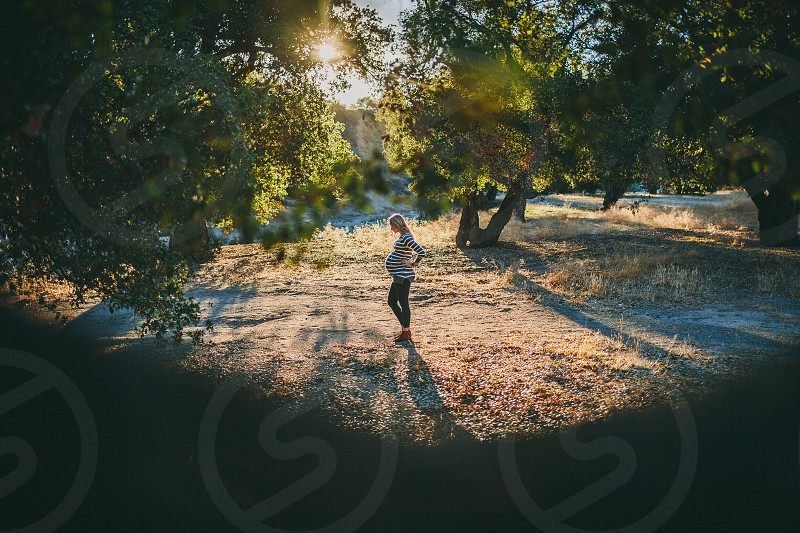 Pregnant woman during golden hour under Oak trees. photo