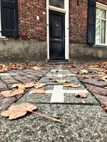 autumn europe belgium baarle hertog nederland frontier door house street leaves photo
