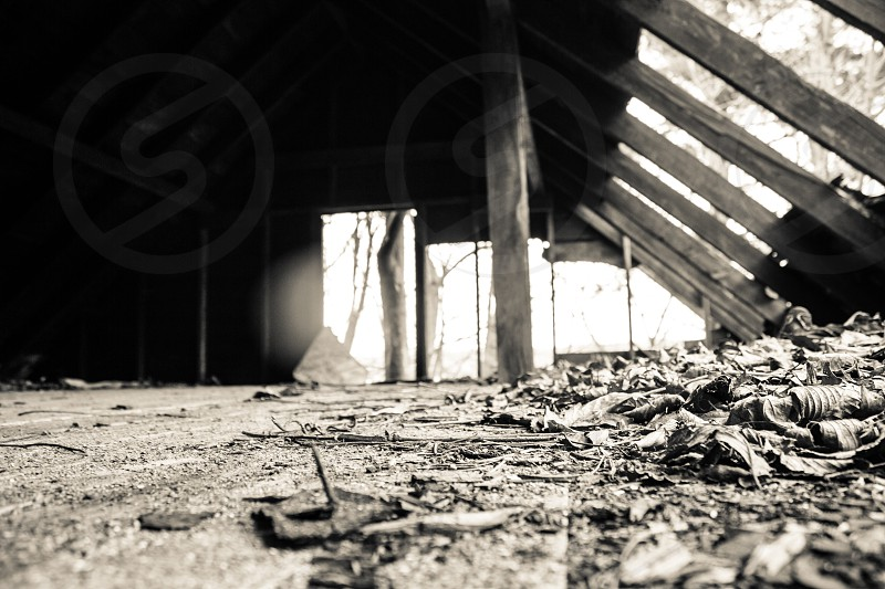Abandoned and dilapidated building in Massillon OH. photo
