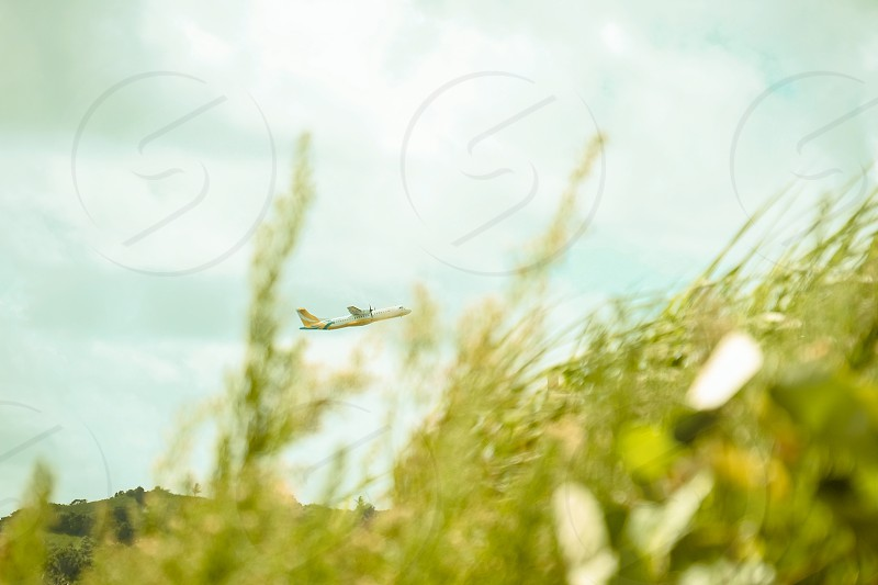 Airplane taking off from an island that looks like a bee in a wheat field. photo