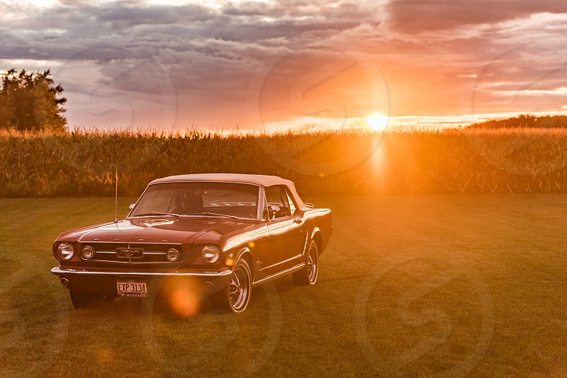 Ford Mustang sitting in a field backlit against a sunset. photo