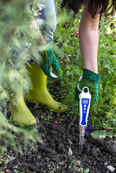 PH meter tester in soil. Measure soil with digital device. Woman farmer in a garden. photo