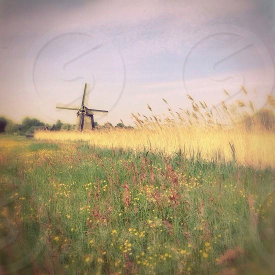 Windmill Holland photo