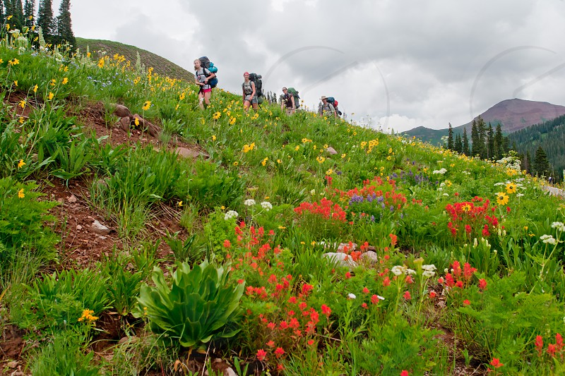 Backpackers along Maroon Pass Trail near Crested Butte Colorado photo