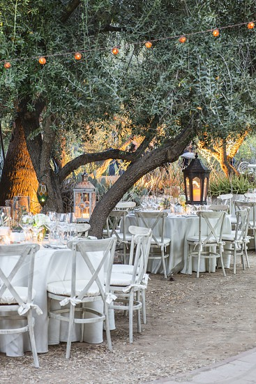 party celebrate celebration dinner party dinner chairs table lights trees al fresco dining al fresco photo